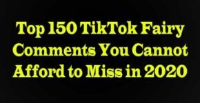 Fairy Comments on TikTok